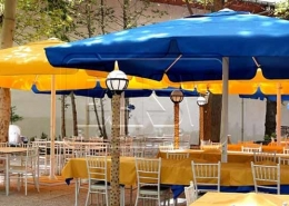 Fixed Umbrella Canopy