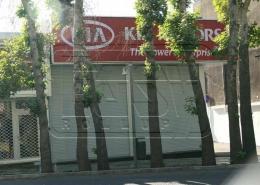 پروژه کرکره فروشگاهی کیاموتور ولیعصر پارک وی